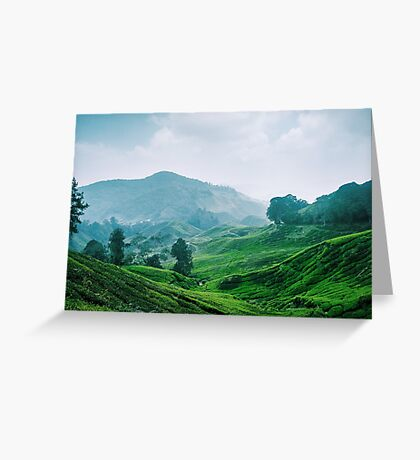 Tea Plantation, Malaysia. Greeting Card