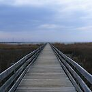Dock to the James River by elasita