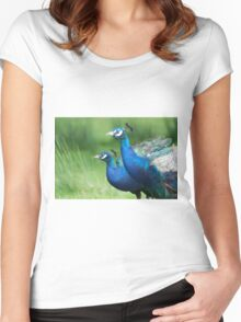 Peacocks in the Park Women's Fitted Scoop T-Shirt