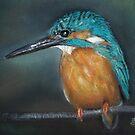 Lone Kingfisher by Linda Woodward
