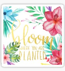 Bloom Where You Are Planted gold Sticker