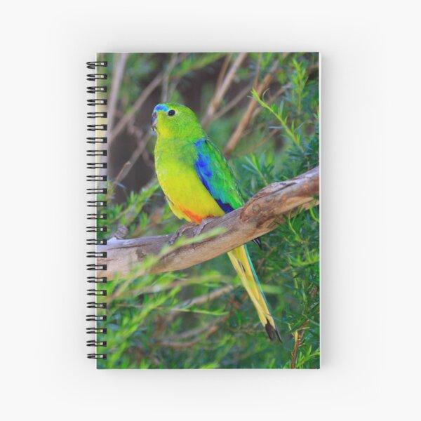 Notebook - OBP Spiral Notebook