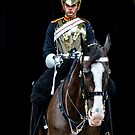 The Horse-guard by MarcW