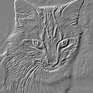 Embossed Profile of a Cat by DebbieCHayes