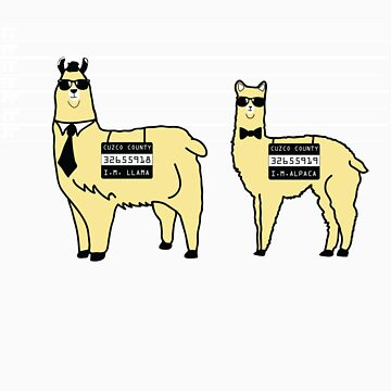 Difference Between Alpacas and Llamas Explained by designedbyn