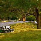Tee Box Bench by Linda Sparks