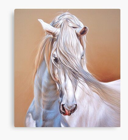 """""""Andalusian stallion"""" - close-up Canvas Print"""