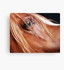 """Arabian"" Canvas Print"