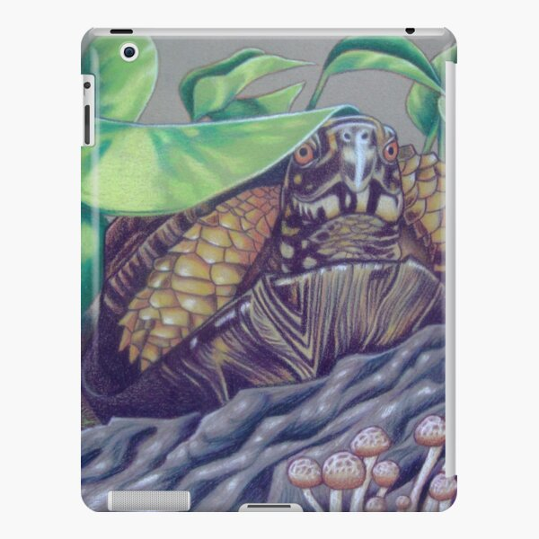 Dax, Eastern Box Turtle iPad Snap Case