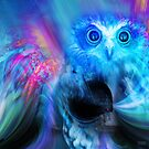 Night Owl by Wendy  Slee