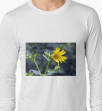 Beautiful sunny yellow flower macro. T-Shirt