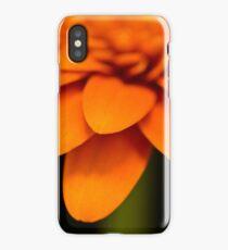 Orange Gerbera Macro iPhone Case/Skin