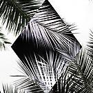 Palm Leaves 3 Geometry by Mareike Böhmer