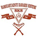 SKS  by clemz