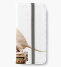 Beautiful sphynx cat with yellow eyes portrait on white background iPhone Wallet/Case/Skin