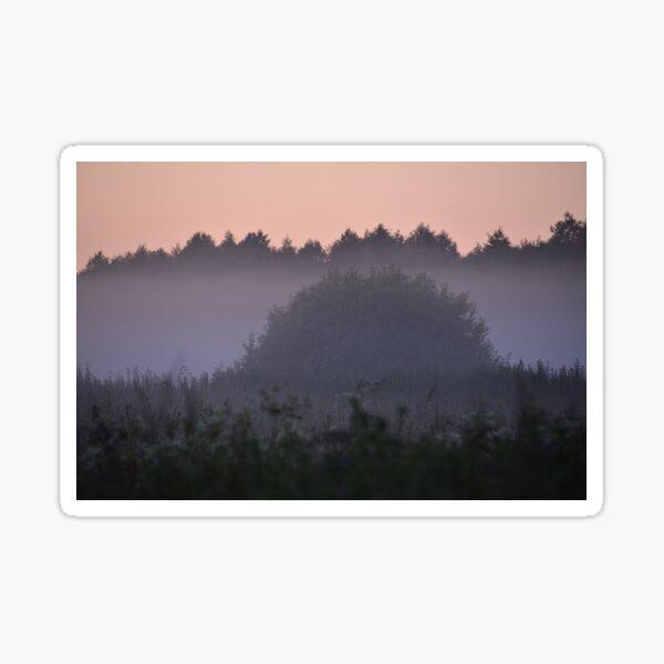 Hedgehog in the Mist Sticker