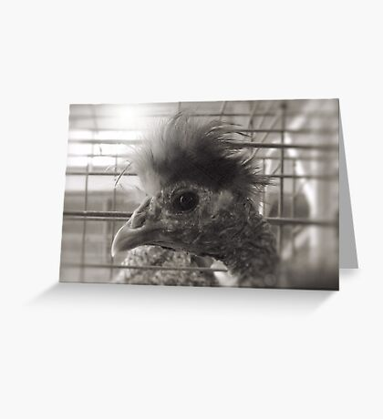 """""""Lil Elvis, The King of Cock and Crow""""... prints and products Greeting Card"""
