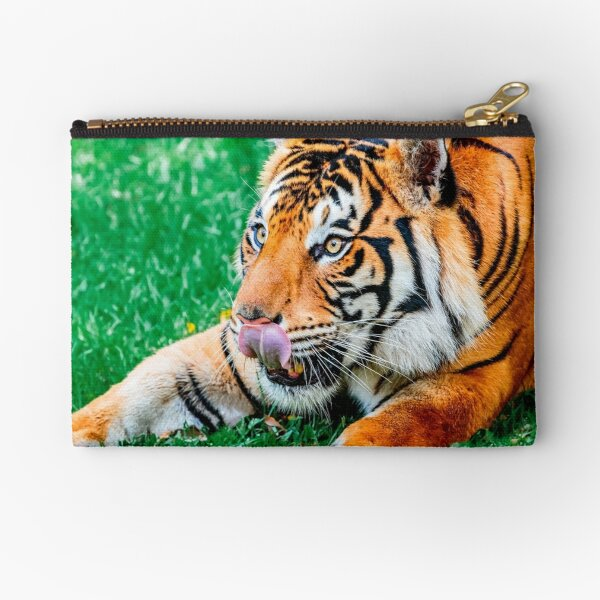 Eager Anticipation Zipper Pouch