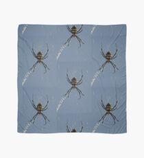 Orb Spider on a web Scarf