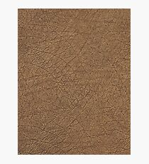LEATHER LOOK, Leather, Antelope, Skin, Texture, Pattern, grain Photographic Print