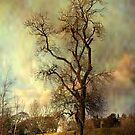 The Tree by Irene  Burdell