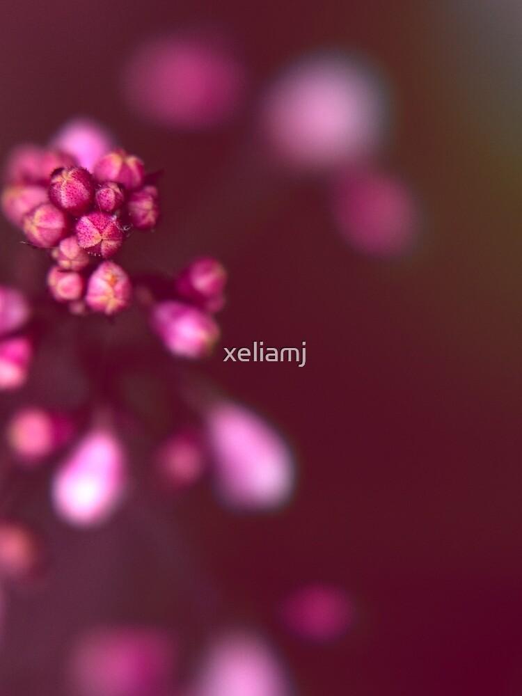 fireworks by xeliamj