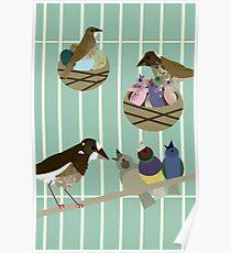 Faith + Birds Poster