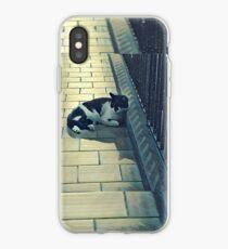 Cat in Snow iPhone Case