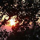 Smoky Sun by Chet  King