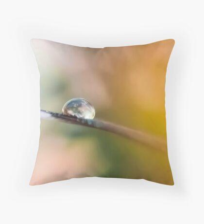 Teardrop on Feather Throw Pillow