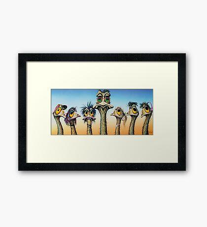 A Longneck & Six Stubbies Framed Print