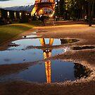 After the rain by Elena Skvortsova