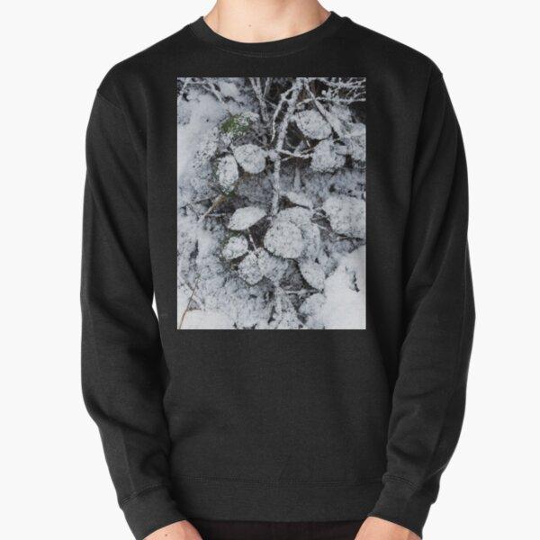 Snow Covered Fern Pullover Sweatshirt
