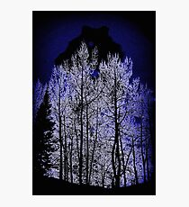 Night Of The Wolf Photographic Print