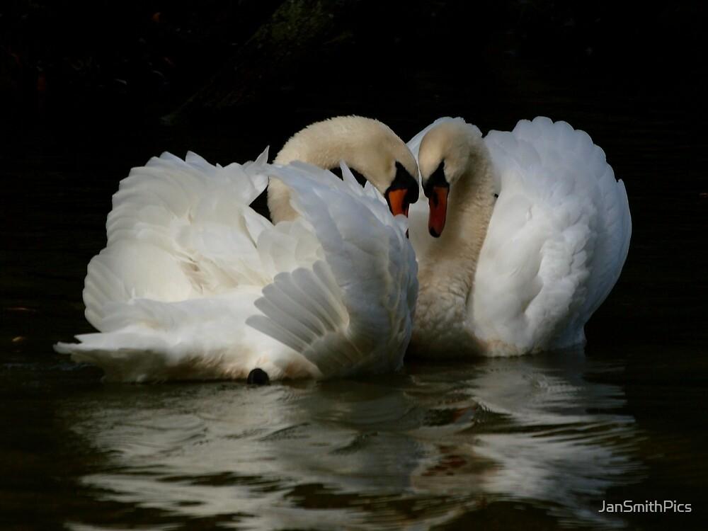 Love Story by JanSmithPics