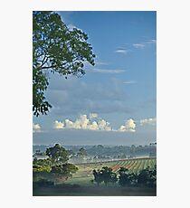 margaret river vines #1 Photographic Print