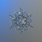 Crystal of chaos and order, real snowflake photo by Alexey Kljatov