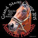 American Pharoah Grand Slam Champ by EyeMagined