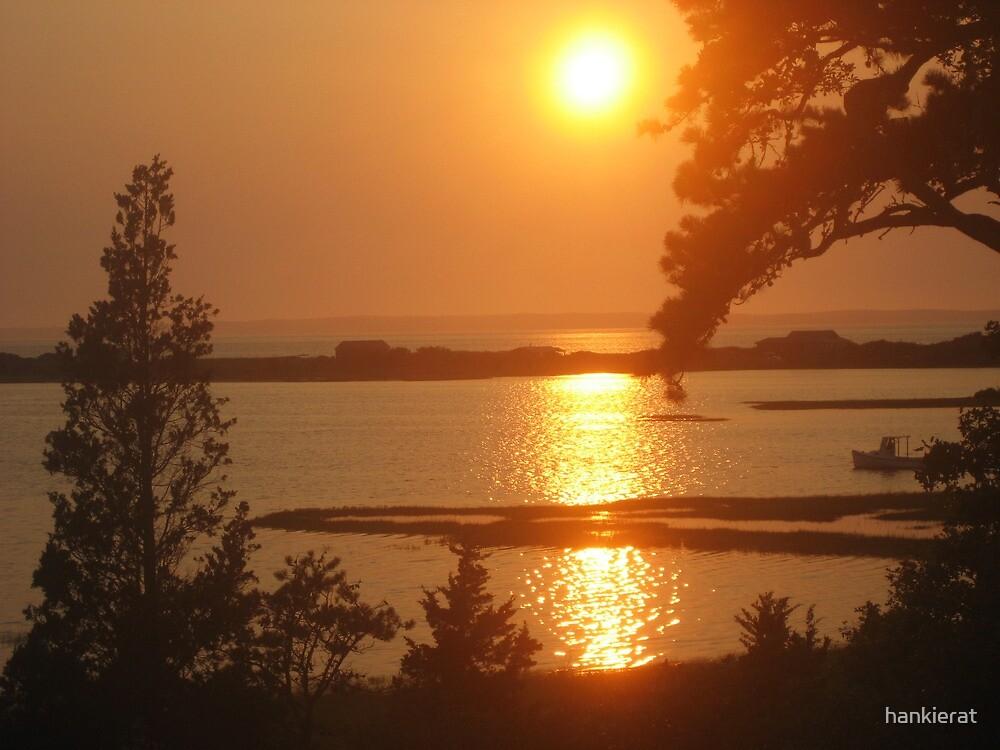 Vineyard Sunset by hankierat