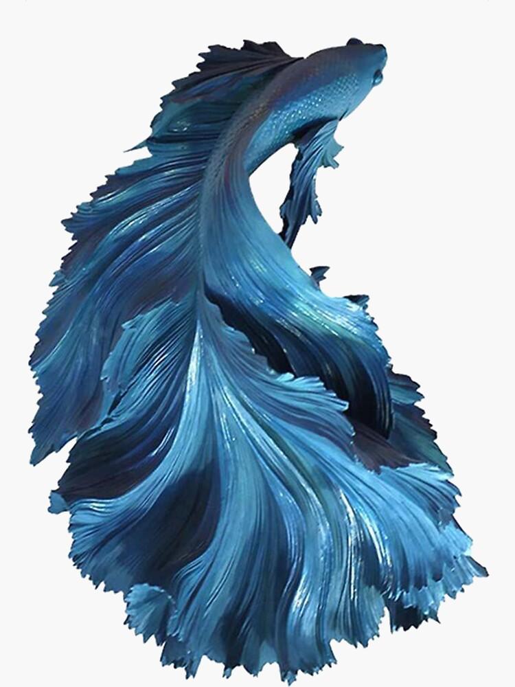 Blue fish by Manaas
