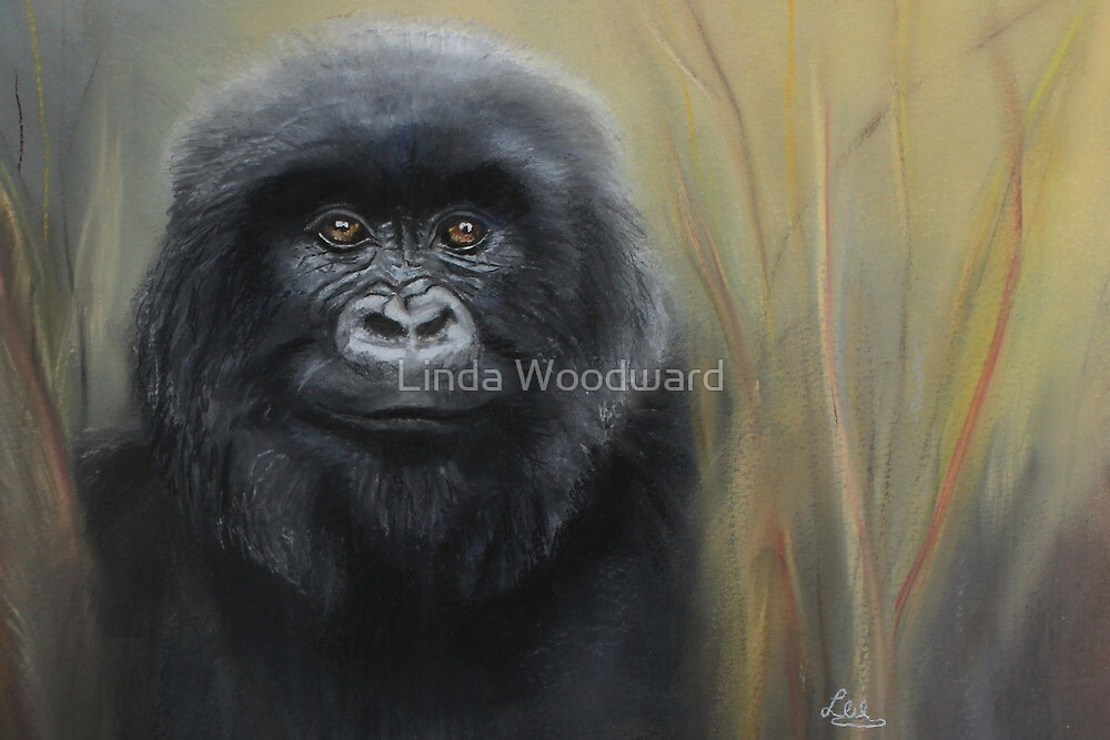 Bohlale by Linda Woodward