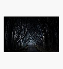 The Dark Hedges, Kingsroad, armoy Photographic Print