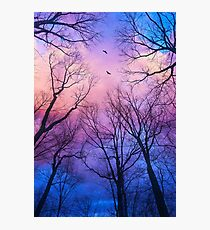 A New Day Will Dawn Photographic Print