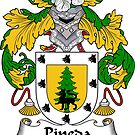 Pineda Coat of Arms/ Pineda Family Crest by William Martin