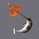 Feeding Habits of the Narwhal by angieschlauch