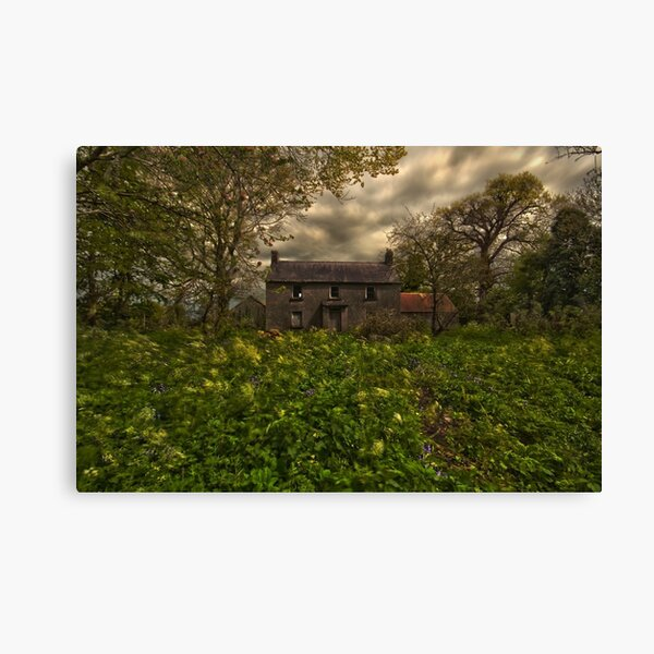 Old irish house Canvas Print