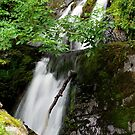 Cautley Spout Lower Falls by mikebov