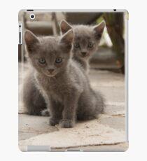 kittens iPad Case/Skin