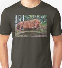 Arabian Quarterhorse Pony Asleep Unisex T-Shirt