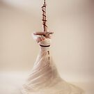 Tie the knot II by aka-photography